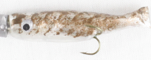 Duo Surnat Truite 4cm